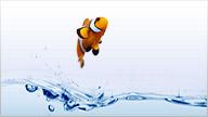 Produkte aus der Kategorie Aquaristik & Fische ansehen