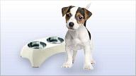 Produkte aus der Kategorie Hunde ansehen