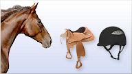 Produkte aus der Kategorie Pferde ansehen