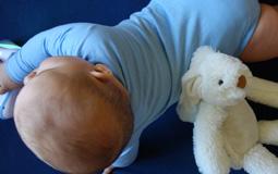 Kleine Grafik zum Thema Baby Body - Baby in hellblauem Baby Body mit weißem Stofftier