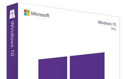 Lila-weiße Software-Verpackung von Microsoft Windows 10 Pro
