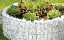 Kleine Grafik zum Thema Garten mit einem runden Hochbeet umrandet von weißen Steinen