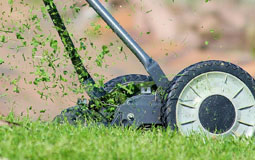 Kleine Grafik zum Thema Rasenmäher mit einem blau-weißen Benzinrasenmäher