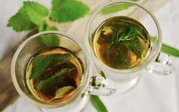 Kleine Grafik zum Thema Bio-Tee mit zwei Gläsern - gefüllt mit Tee und Pfefferminzblättern