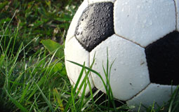 Kleine Grafik zum Thema Fußball mit einem nassen Fußball auf Rasen liegend