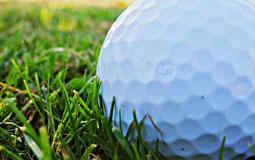 Kleine Grafik zum Thema Golf mit einem Golfball auf Golfrasen liegend