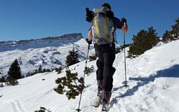 Kleine Grafik zum Thema Ski mit einem Ski-Langläufer an einem Hang