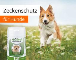 Kleine Grafik zum Thema Tierbedarf mit einem Hund, der über eine Wiese rennt und eine Flasche AniForte Zeckenschildkapseln