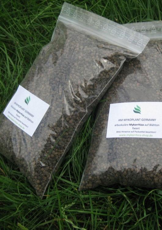 Vibes-Kachel zum Thema Mykorrhiza mit zwei Säcken Endozykorrhiza