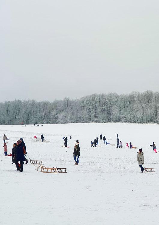 Vibes-Kachel zum Thema Wintersport mit vielen Menschen, die ihren Winterschlitten hinter sich herziehen